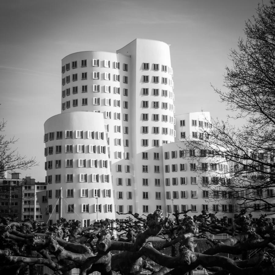 Gehry Bauten am Düsseldorfer Zollhof